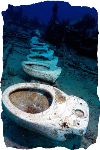 Wreck Diving in the Red Sea, Egypt