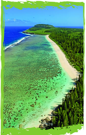 Loyaltu Island of Mare, New Caledonia